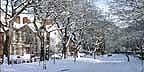 photo of winter in westoe village south shields