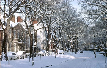 picture of winter in westoe village